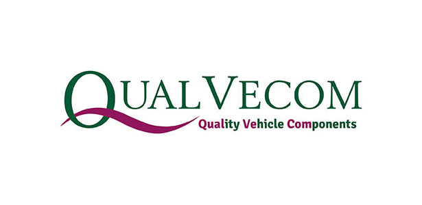 http://www.cvworkshopexpo.ie/wp-content/uploads/2020/01/Qualvecom_logo.jpg